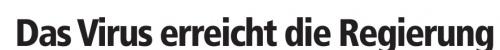 Schweinegrippe_Headline